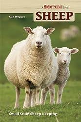 Sheep (Hobby Farm)