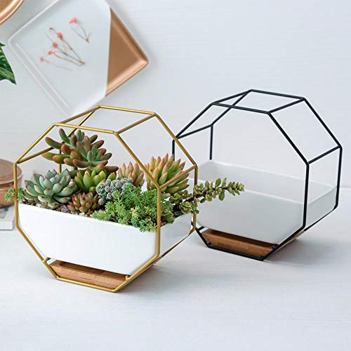 Simple Octagonal Succulent Flower Pot - Geometric Flower Stand Ceramic Flower Pot - Bamboo Tray Iron Frame Set for Home Decoration