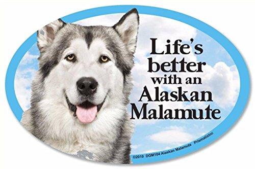 - Prismatix Alaskan Malamute Oval Dog Magnet for Cars