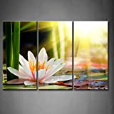 First Wall Art - 3 Panel Wall Art Beautiful Water Lily Sunshine Painting The Picture Print On Canvas Flower Pictures For Home Decor Decoration Gift piece (Stretched By Wooden Frame,Ready To Hang)