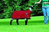 Weaver Leather ProCool Sheep Blanket, Red, Medium