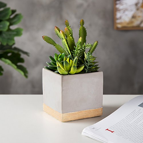 MyGift 9-Inch Artificial Succulent Plant Arrangement in Square Gray Clay Planter by MyGift (Image #1)