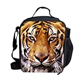 Best tiger lunch boxes  Buyer's Guide