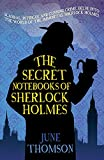 Secret Notebooks of Sherlock Holmes, The