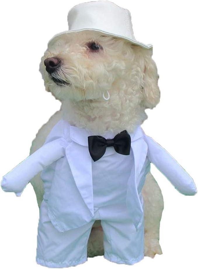 WHWH Suministros para Mascotas Divertido Vestido de Novia para Perro japonés Transforma Ropa de Dos pies Tela de poliéster Teléfono móvil Lavado a máquina,Male White-M