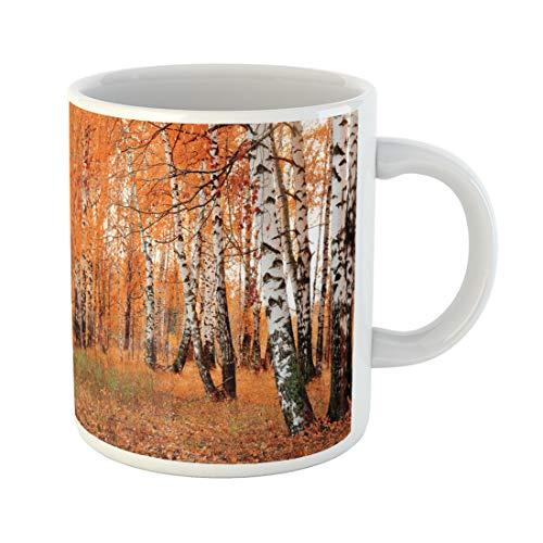 Semtomn Funny Coffee Mug Red Landscape Orange Birch Grove Pink Scenery Nature Autumn Forest 11 Oz Ceramic Coffee Mugs Tea Cup Best Gift Or Souvenir]()