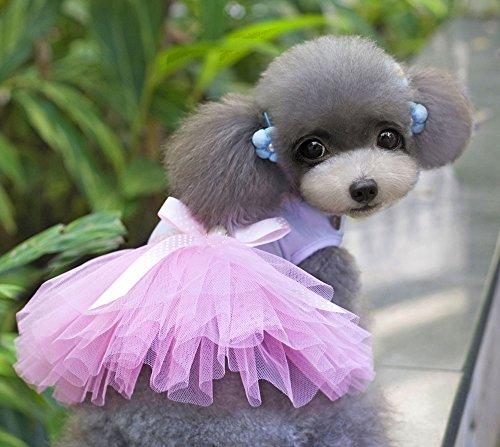 XING YU Heart Shape Dot Princess TUTU Dress, Pink, Medium by XINGYU