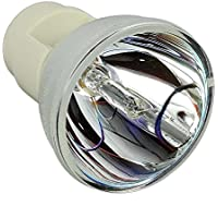 RLC-061 Original Projector Bare Bulb/Lamp Compatible For VIEWSONIC Pro8200 Pro8300 150Day Warranty