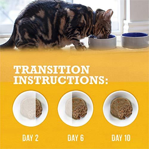 Purina Beyond Grain Free, Natural, Adult Wet Cat Food 14