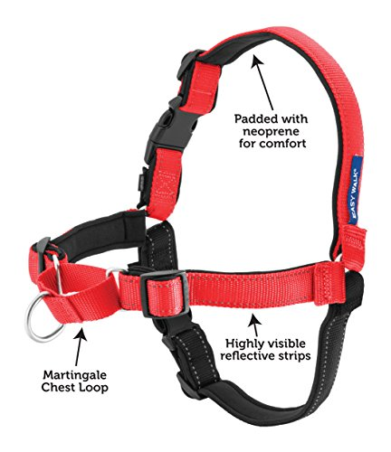 Petsafe Deluxe Easy Walk Harness Buy Online In Uae