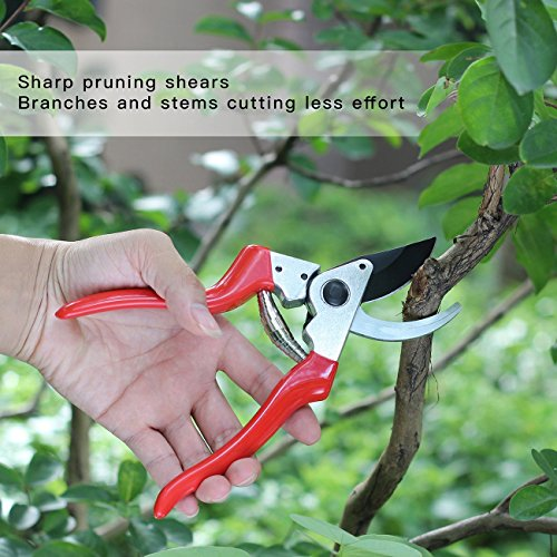 "SHINE HAI Pruning Shears, Professional 8.5"" SK5 Sharp Bypass Hand Pruner Shears with Safety Lock, Tree Trimmers Secateurs, Garden Shears, Clippers for the Garden, Red"