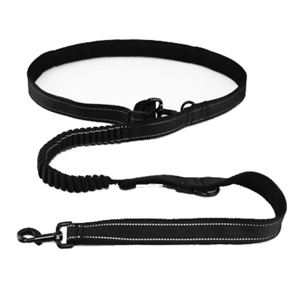 Large Adjustable Explosion-Proof Nylon Reflective Pet Leash