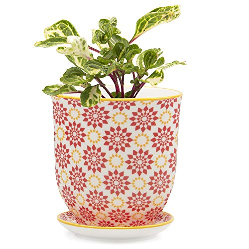 Chive – Big Liberte, Large Succulent and Cactus Planter Pot – 4.25″ Ceramic Flower and Plant Container with Drainage Hole and Detachable Saucer Great for Indoor/Outdoor Garden Decor (Red Stars)