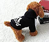 Moolecole Pet Sports Apparel Cat & Dog Cold Weather
