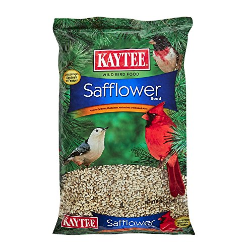 Kaytee Safflower Seed, 5-Pound - Seed Bird