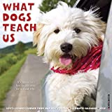 What Dogs Teach Us 2020 Wall Calendar