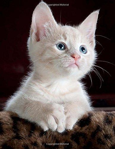 "Read Online Kitten Notebook: White Blue-Eyed Kitten Notebook (Composition Book Journal) (8.5 x 11"" Large) (Animals) (Volume 2) ebook"
