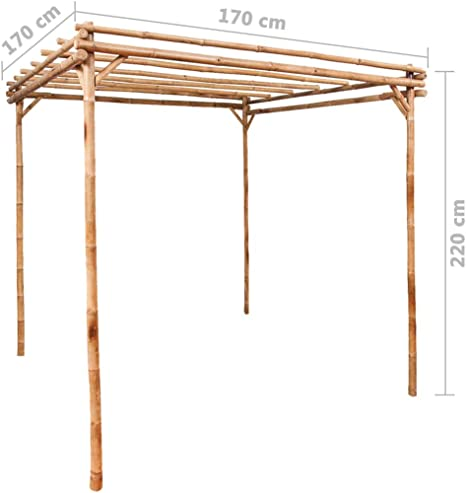 BNT Flamingo Pérgola de bambú 170x170x220 cm: Amazon.es: Hogar