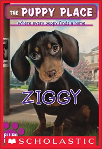 Httpzmsbcdlibrarysbookdownload Ebook Pdf File The Dog