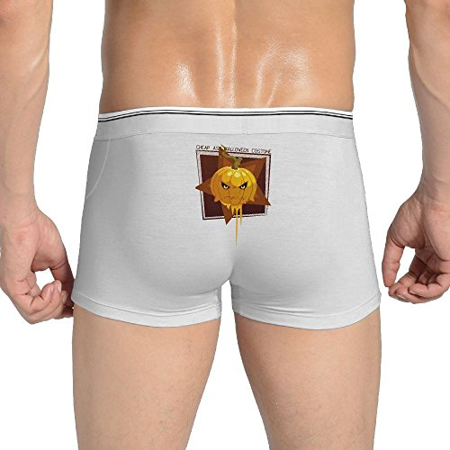 Ewok Costume Pattern (Cheap Ass Halloween Costume Pumpkin Underwear Cute Underwear With Pattern Large COOLSHEN)