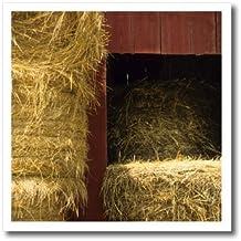 "3dRose ht_91508_3 Missouri, Winona, hay bales, red barn, farm-US26 AJN0014-Alison Jones-Iron On Heat Transfer, 10 by 10"", For White Material"