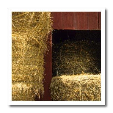 (3dRose Missouri, Winona, hay Bales, red barn, farm-US26 AJN0014-Alison Jones-Iron On Heat Transfer, 10-inch, for White Material)
