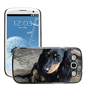 Hot Style Cell Phone PC Hard Case Cover // M00115168 Dog Dachshund Pet Animal Puppy // Samsung Galaxy S3 S III SIII i9300