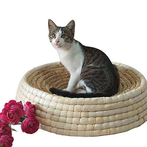 Kitty Cat Tunnel Perch - TENCMG Cat Bed & Cave Cat House Cat Condo Pet Bed -Cat Toy Foldable Cat Tunnel - Cat Channel Rolling Cat Nest