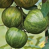 Burpee 'Green Zebra' Organic | Green Slicing Tomato | 30 Seeds