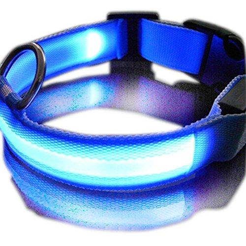 SUKRAGRAHA New Super Bright Nylon LED Dog Night Safety Collar Flashing Light up (Blue, L)