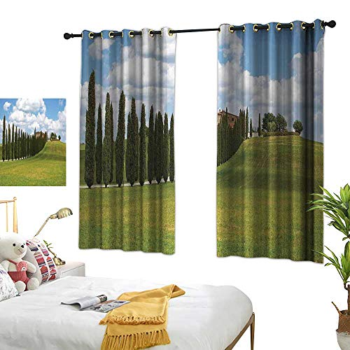 Warm Family Curtain Tuscan,Landscape Abandoned Farm House Vineyard on Hill Tall Trees Village Path,Green and Pale Blue 72