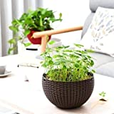 Generic Hanging Planter Round Decor Garden Rattan Plastic Flower Pot Basket for Plant,White (Set of 1)