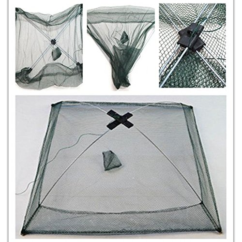 (NPLE--Folded Fishing Net Small Fish Shrimp Minnow Crab Baits Cast Mesh Cage Trap)