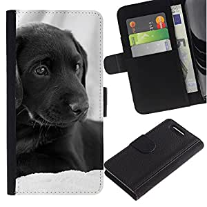 Graphic Case / Wallet Funda Cuero - Curly Coated Black Short Hair Retriever Dog - Sony Xperia Z1 Compact D5503