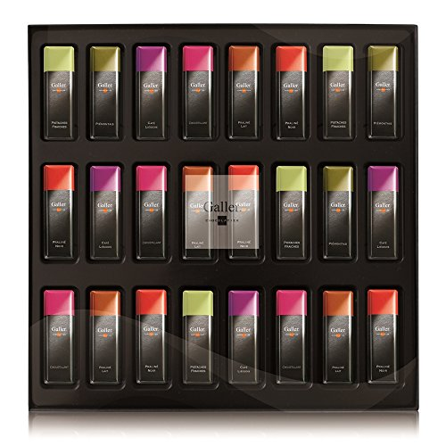 Galler (Galley) Chocolte Belgium Royal Warrant Mini Bar Gift Box 11 types 24 bottles (1 box) by Galler