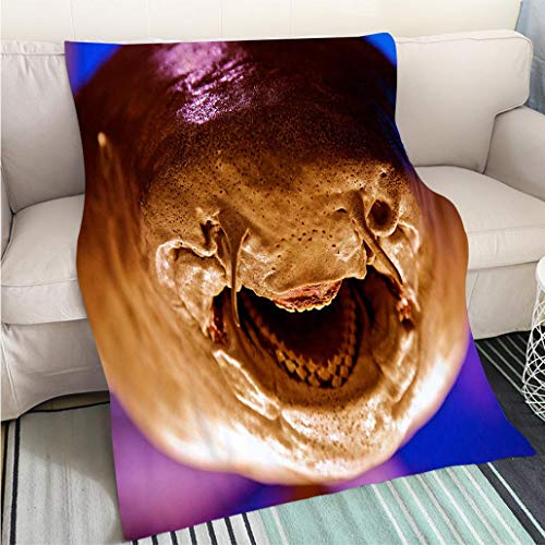 Weave Pattern Printed Multicolor Custom Design Shark Attack Teeth Close Up Smiling Face Jaw Predator Agression Perfect for Couch Sofa or Bed Cool Quilt