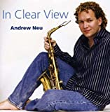 In Clear View by Andrew Neu