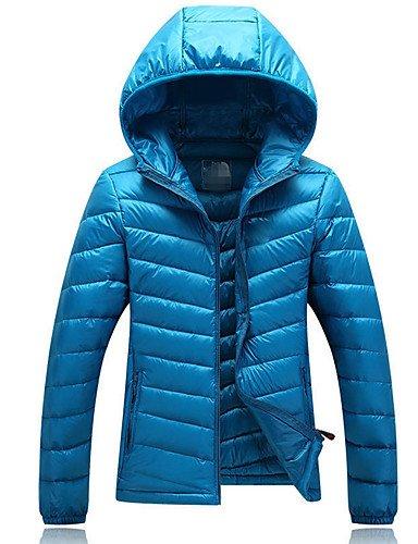 Gray Down Polyester out Long Simple Coat light Regular amp;SHANGYI Women's Solid Sleeves TT Duck Going Down blue vzATpW0q