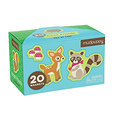 Forest Friends Box of Magnets: Mudpuppy, Dekker, Silvia: Toys & Games