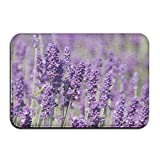Wonderful Lavender Flower Non-Skid Slip Door Mat Washable Indoor/Outdoor Low Profile Doormat With Stylish Door Inspired Design 2.11.4'' LW