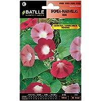 Semillas de Flores - Ipomea-Maravillas Roja - Batlle
