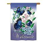 Breeze Decor BG-H-104069-IP Blue Butterflies Vertical House Flag, 28″ x 40″, Multicolor Review