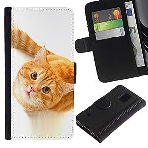 eJoy---La carpeta del tirón la caja de cuero de alta calidad de la PU Caso protector - Samsung Galaxy S5 V SM-G900 - --Cute Curious Orange Cat