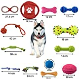 Zuloxa 12+1 dog toys pack natural variety durable cotton rope for pet tug chew ball plush large bone with squeak rubber gift soft gifts bag love bell best little pets play small and medium dogs puppy Review