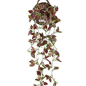 HUAESIN Artificial Ivy 3.4 FT Fake Hanging Plants Scindapsus Vine Silk Plants Leaf Cover for Shelve Wall Weeding Indoor Outside Hanging Basket Decor (Purple) 75