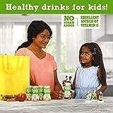 good2grow Fruit Juice Bottles, 6-Ounce Good2grow