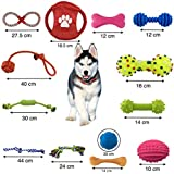 Zuloxa 12+1 dog toys pack natural variety durable cotton rope for pet tug chew ball plush large bone with squeak rubber gift soft gifts bag love bell best little pets play small and medium dogs puppy