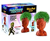 Groot Chia Pet, Guardians of the Galaxy Vol. 2 Pottery Planter