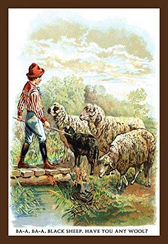 Ba-a Ba-a Black Sheep Museum quality giclee print canvas wrap(20