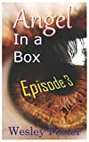 img - for Angel in a Box: Episode 3 book / textbook / text book